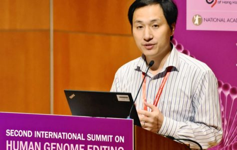 Chinese Scientist Genetically Modified Two Embryos