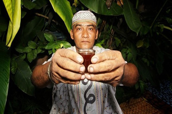 The Uprise of Ayahuasca