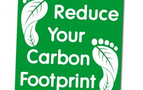 How to Reduce your Carbon Footprint & Water Consumption
